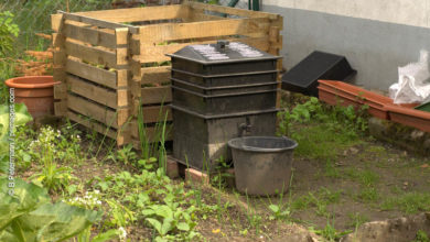 Photo of Wurmkompostierung mit einer Wurmfarm oder Wurmbox